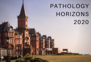 Pathology Horizons: Slieve Donard Resort