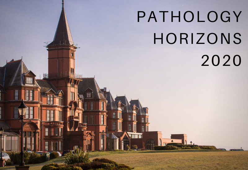 Pathology Horizons 2020: Covid-19 Update